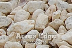 "1 - 2"" Acres Edge Rounds River Rock Acres Edge, Pelham  NH Landscape & Hardscape Supply, Landscaping & Hardscaping Supplies"