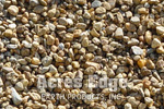 "3/8"" Pea Stone Tan Acres Edge, Pelham  NH Landscape & Hardscape Supply, Landscaping & Hardscaping Supplies"
