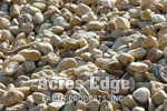 "3/4"" Round Stone Tan Acres Edge, Pelham  NH Landscape & Hardscape Supply, Landscaping & Hardscaping Supplies"